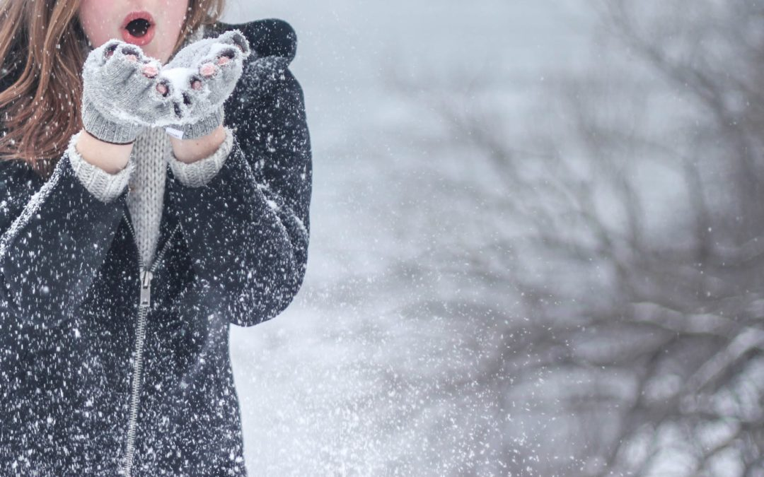 6 Things To Do In Ottawa This Winter